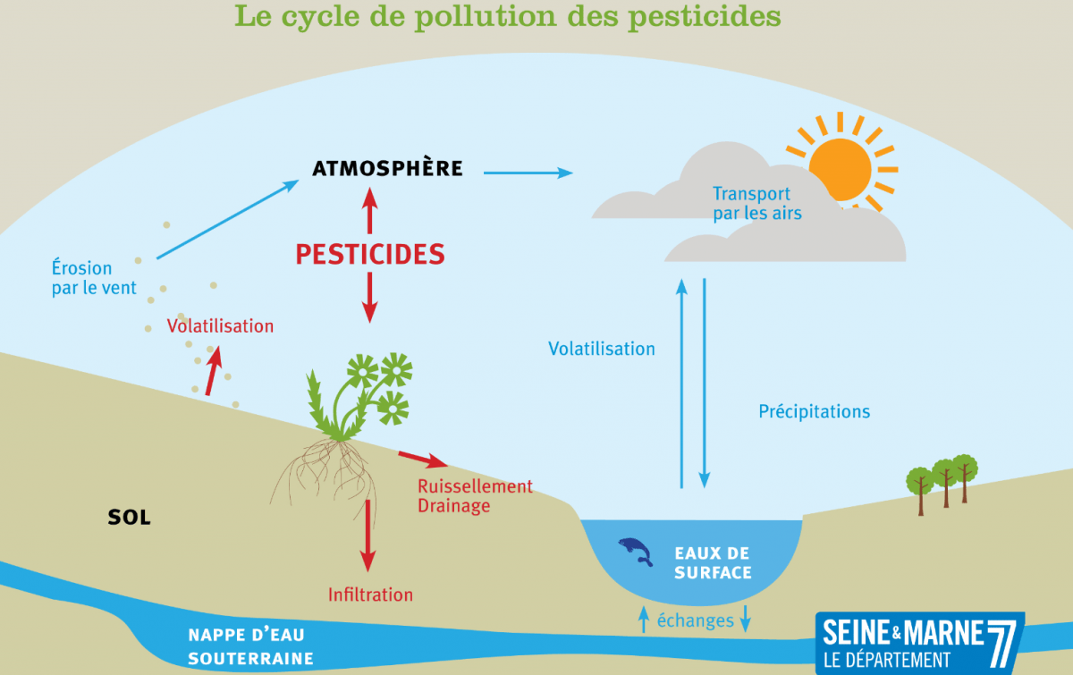 Infographie sur le cycle de pollution des pesticides