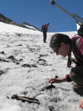 Une chercheuse réalise des fouilles archéologiques en montagne l'hiver