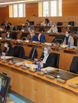 Séance publique du conseil départemental de Seine-et-Marne le 5 mars 2021