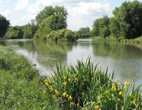 la rivière L'Orvanne