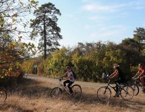 Des cyclistes en pleine nature en Seine-et-Marne