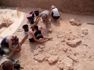 Fouilles archéologiques à Ormesson