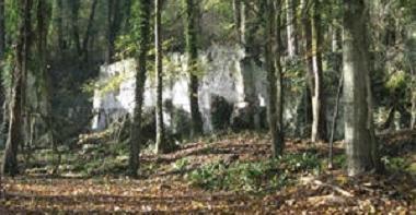 Espace naturel sensible, le bois de la Bergette